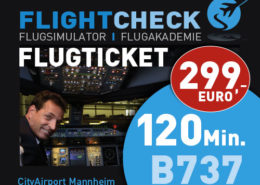 Flugsimulator Ticket 120 Minuten