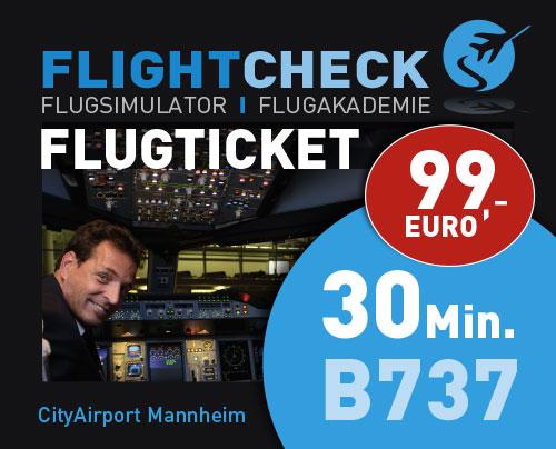 Flugsimulator Ticket 60 Minuten