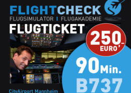 ticket-737_90min_neu