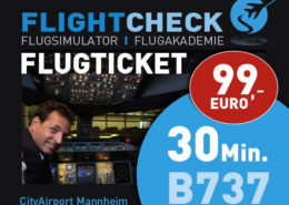 Flugsimulator Ticket 60 Minuten
